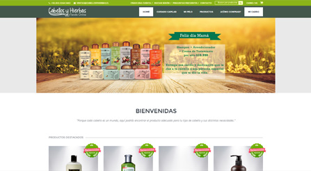 Planen eCommerce, softland,SAP,app,software,emarketing, e-commerce, ecommerce, vender por internet, sales, shops, comercio electronico